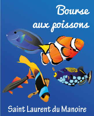 bourse poissons saint laurent manoire