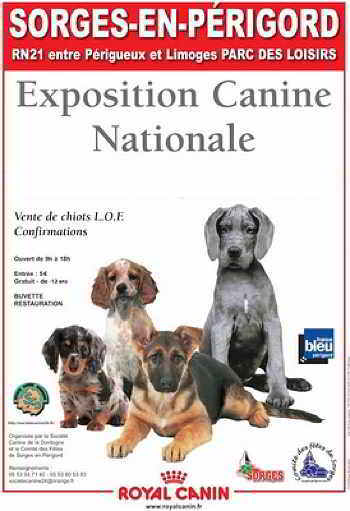 exposition canine sorges